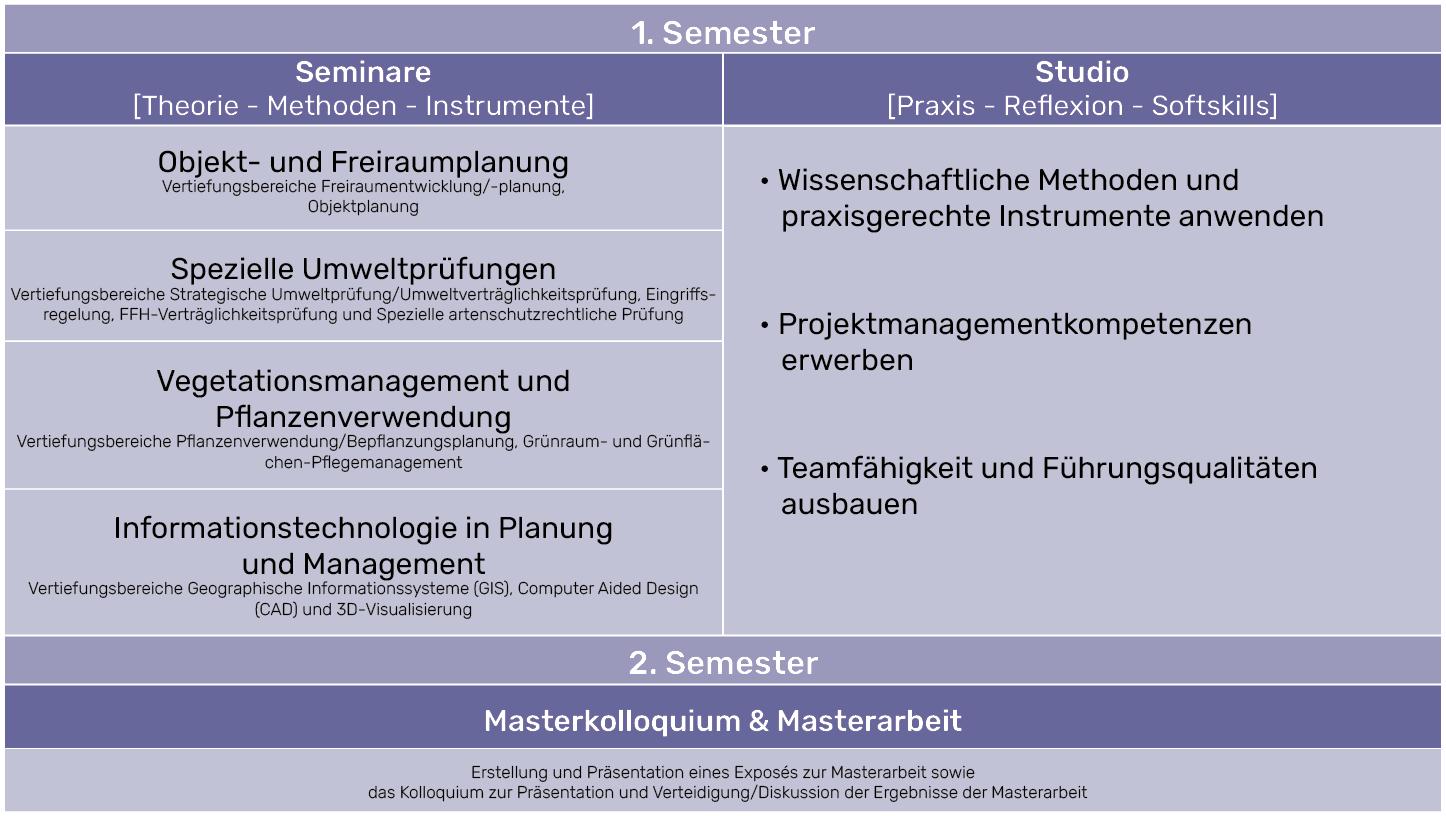 Semesterstruktur MLU