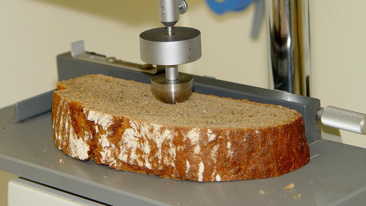 Brot im Labor der Ökotrophologie