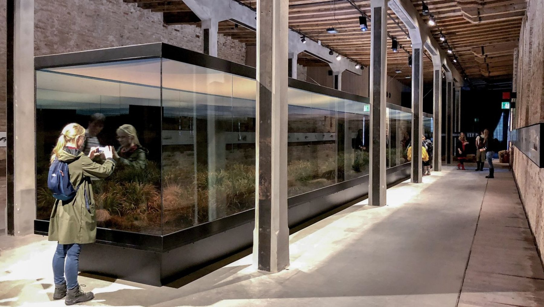 der argentinische Beitrag - ein Terrarium, das mittels optischer Illusion die Weiten einer Steppenlandschaft zitiert