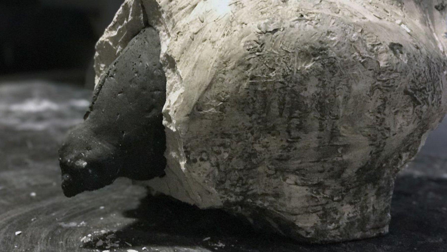 Ausschalung der Betonplastik