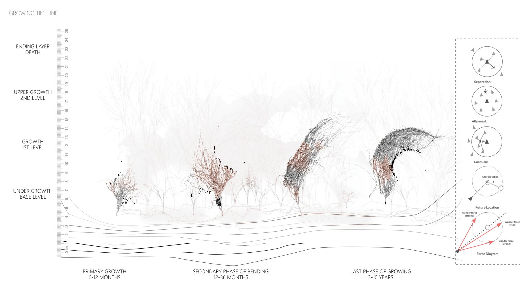 Biotope Generative System - Strategy for integrating Contemporary Housing Community with Nature in Florida