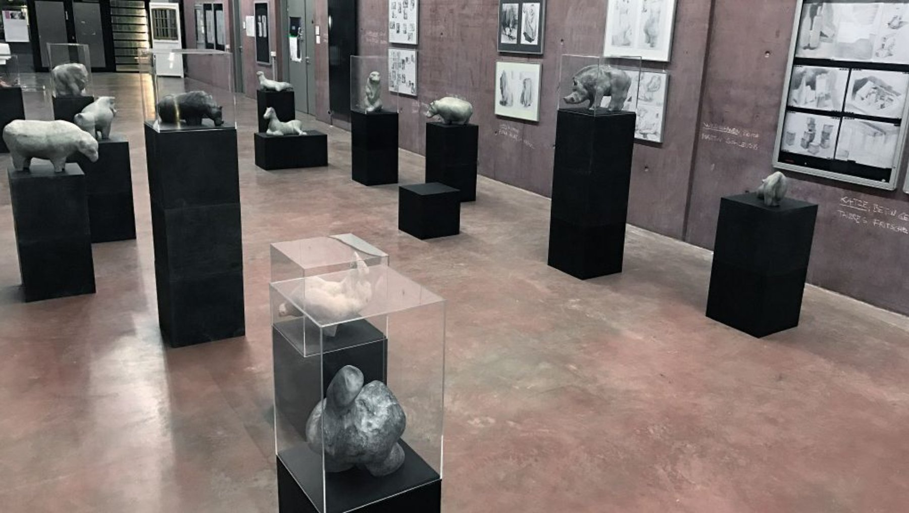 Ausstellung der Arbeiten