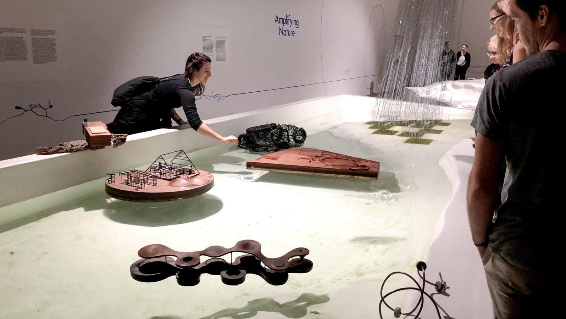 """""""Amplifying Nature"""" - die Natur als Prozess im polnischen Pavillon"""